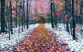 winter mac backgrounds mac winter wallpaper 62 images