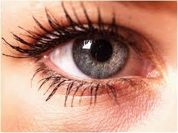 17 luxury simple eye makeup tutorial for green eyes eyeshadow ideas