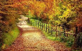 Fall Colors Desktop Wallpapers ...