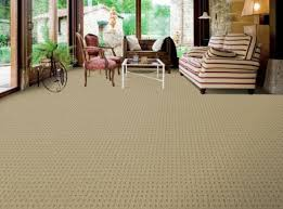 bliss carpeting offers angora premium carpet even es with our built in magic fresh odor reducing treatment silver release antimicrobial carpet