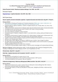 Oracle Functional Consultant Resume Ceciliaekici Com