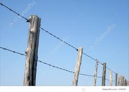 wire farm fence. Barbed Wire Farm Fence N