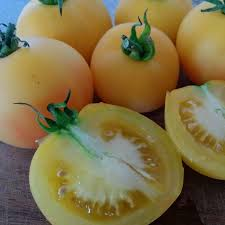 garden peach tomato. Fine Peach Organic Tomato Seeds  Garden Peach  Heirloom Sweet Containerfriendly  Tomatoes Indeterminate And