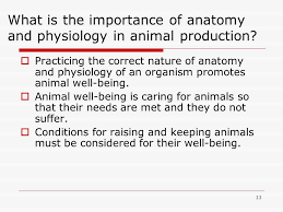 importance of anatomy aee importance of anatomy unit a basic principles of animal husbandry ppt downl on importance of learning
