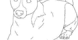 Puppy Dog Coloring Pages Printable Cat And Together Free Hot Year Of