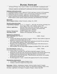Entry Level It Resume Examples Classy Entry Level Resume Samples Inspirational The 28 Best Cv Images On