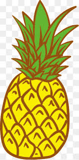pineapple png. vector pineapple, fruit, pineapple png and png