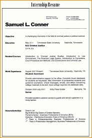 Resume Format Examples For Job Ua Professional Resumes Sample Online