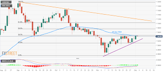 Usd Cnh Technical Analysis Steps Back From 7 0456 55