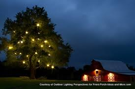 outdoor tree lighting ideas. Christmas Lights On Lone Tree And Barn Outdoor Lighting Ideas O