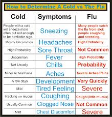 The Flu Archives Common Sense Evaluation