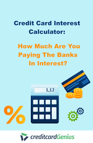 Credit Card Interest Calculator Credit Card Interest Calculator How Much Are You Paying The Banks