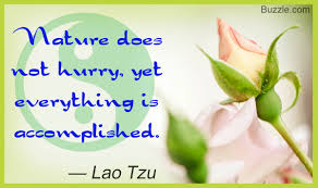 Greatest Pearls Of Wisdom Famous Quotes About Taoism