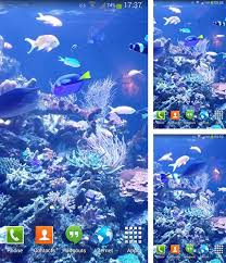 Android Aquariums Live Wallpapers  Free DownloadFull Hd Live Wallpaper For Android Free Download