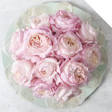 garden rose austin keira holex flower