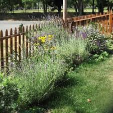 Small Picture Thriving Garden Design 16 Photos Landscape Architects South