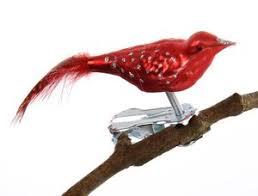 Mini Vogel Glimmerpunkte Farbige Perlhuhn Feder Matt Rot