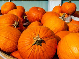 Pumpkins: Health benefits and nutritional breakdown