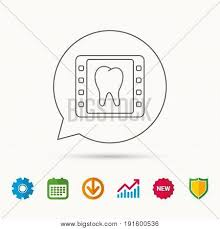 Dental X Ray Icon Vector Photo Free Trial Bigstock