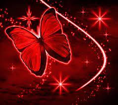 Red Butterfly Wallpaper on WallpaperSafari