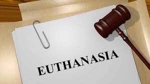 Image result for euthanasia ethics