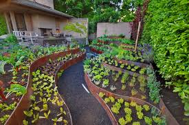 Small Picture All About Vegetable Garden Layout front yard landscaping ideas