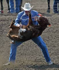 rodeo cruelty forget the myth