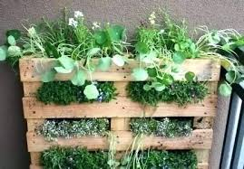 patio herb garden pallet source life on the balcony ideas designs he