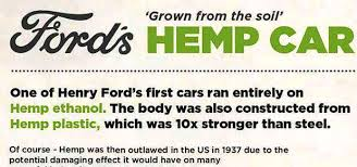 Image result for hemp plastic