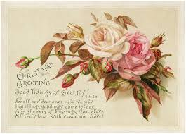vine christmas roses image