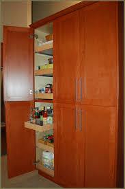 Tall Kitchen Storage Cabinet Kitchen Tall Kitchen Storage Cabinet With Kitchen Storage