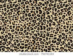 Leopard Pattern Unique Leopard Pattern Images Stock Photos Vectors Shutterstock