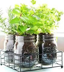 diy indoor garden herb garden indoor herb garden ideas homesteading indoor gardening tips diy indoor garden diy indoor garden