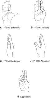 Finger Rom Chart Measurement Of Range Of Motion Of The Wrist And Hand