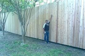 Simple and cheap privacy fence design ideas Horizontal Diy Privacy Fence Privacy Fence Ideas Amusing Privacy Fence Ideas Cheap Within Plan Privacy Fence Designs Home Art Decor Diy Privacy Fence Need Backyard Privacy Ideas Garden Privacy Screens