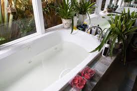 bathub and plants