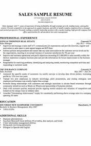 Additional Skills For Resume Magnificent Additional Skills For Resume Formatted Templates Example
