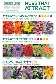 121 best pollination and flowers images on beekeeping bee keeping and bees
