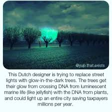 Glow In The Dark Trees To Replace Street Lights