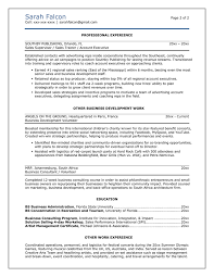 It Professional Resume Examples 100 Images Resume 2016