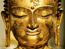 essay on the buddha s diagnosis of human suffering the  image