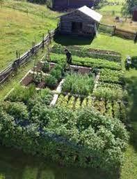 20 simple farm garden ideas for