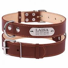 personalized leather dog collar with laser engraved nameplate brown puppy small medium large breeds