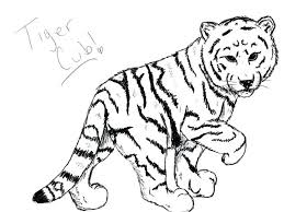 baby white tigers drawing.  White 600x450 White Tiger Coloring Pages Cute How To Draw A Baby Inside Tigers Drawing L