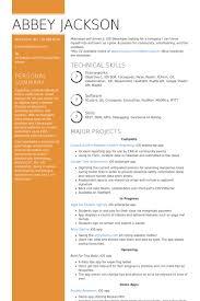 Sample Painter Resume Basic Resume Template Painter Resume Samples Visualcv Resume Samples
