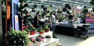 terra garden center garden center garden centre garden centre in wow furniture home design ideas with