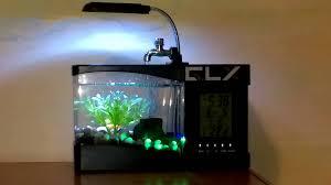 office desk fish tank. Mini USB Desktop Aquarium Review Office Desk Fish Tank