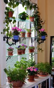 Kitchen Herb Garden Indoor Kitchen Winning Shelf Window Herb Kitchen Garden Basil Parsley