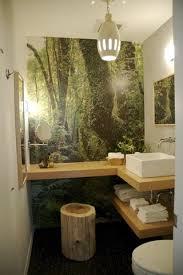 Top 18 Bathroom Wall Murals  AllstateLogHomescom Bathroom Wallpaper Murals