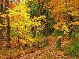Beautiful Fall Scene Wallpaper Desktop HD